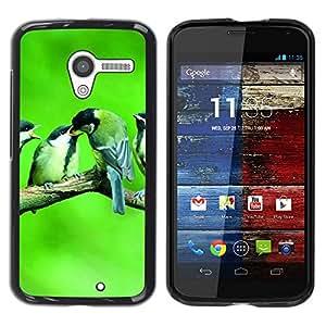 Be Good Phone Accessory // Dura Cáscara cubierta Protectora Caso Carcasa Funda de Protección para Motorola Moto X 1 1st GEN I XT1058 XT1053 XT1052 XT1056 XT1060 XT1055 // Cute Birds