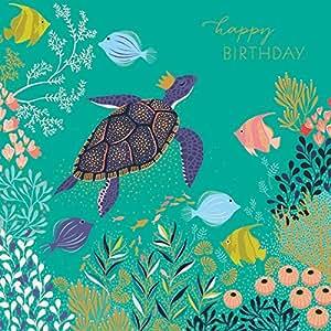 Tarjeta de cumpleaños, tortuga feliz cumpleaños, SAM89 por Sara Miller London: Amazon.es: Oficina y papelería
