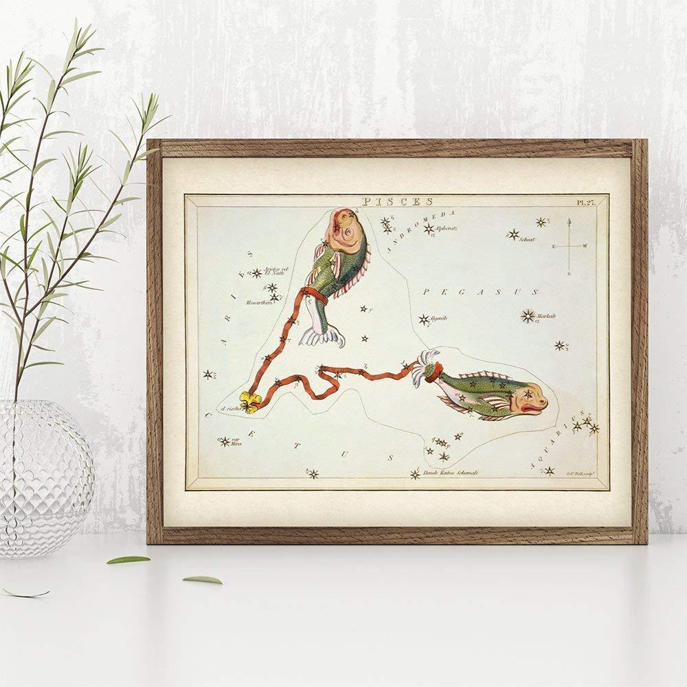 Antique Zodiac Pisces Constellation Plate 11x14 Unframed Art Print Great Gift