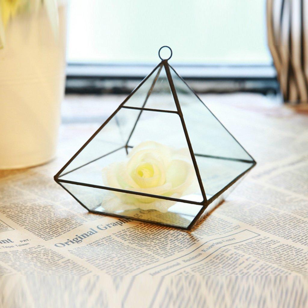 jinxin Modern Artistic Clear Glass Geometric Terrarium Five-Surfaces Diamond Succulent Fern Moss Terrarium with Loop Hanging flowerpots (Size : A)