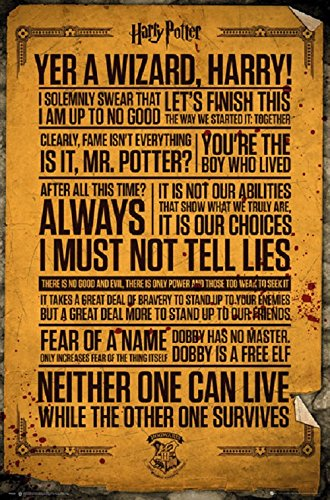 Amazon Com Harry Potter Quotes 24x36 Poster Posters Prints