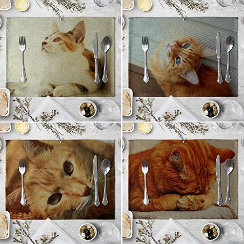 memorytime Cute 3D Cat Print Placemat Pad Linen Dining Table Insulation Mat Home Decor Kitchen Dining Supplies - 6# by memorytime (Image #5)
