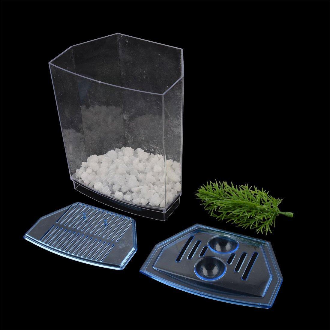 Amazon.com : eDealMax pecera acuario de plástico Mini tanque de pescados de la decoración del árbol de Fry contenedor caja Jaula : Pet Supplies