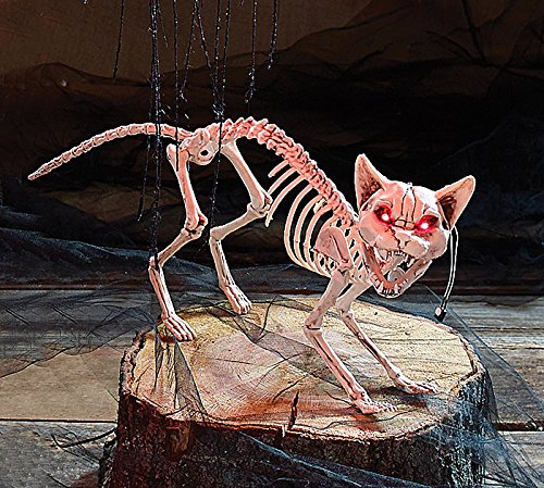 Burton and Burton Skeleton Cat Halloween Decoration with Light Up Eyes Clap Activated (Halloween Cat Decorations)