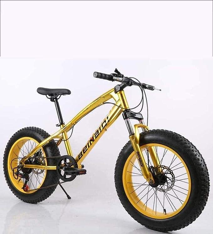 QZ Fat Tire for Hombre de Bicicleta de montaña, Marco Doble Freno de Disco de Acero de Alto Carbono/Bicicletas Cruiser, Playa de Motos de Nieve Bicicletas, 26 Pulgadas Ruedas 5-25: Amazon.es: Deportes