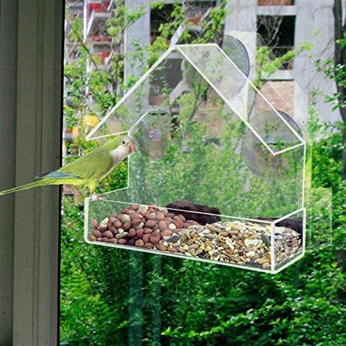 Acrylic Transparent Bird Squirrel Feeder Tray Birdhouse Window Suction Cup Mounted Haning Rack Holder Pet Birds Food Dispenser