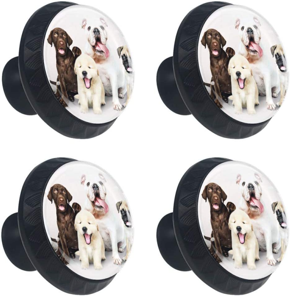 4 Pieces Set Cabinets Hardware Round Furniture Knobs Dog Family Print,Drawer Dresser Cupboard Wardrobe Pulls Handles for Home Kitchen
