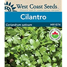 Cilantro Seeds - Santo Certified Organic (approx. 164 seeds)