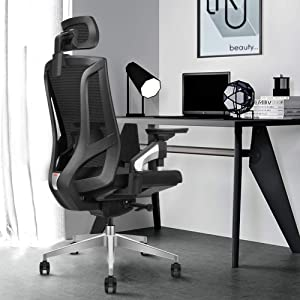 Ergonomic Mesh High-Back Office Chair with Tilt Restriction Device | 4D Adjustable Armrest | Adjustable Headrest | Adjustable Lumbar Support|Standard Carpet Casters|360-degree Rotable Computer Chair