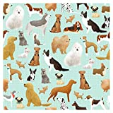 Jillson Roberts 24 Sheet-Count Premium Printed Tissue Paper Available in 15 Different Designs, Best in Show
