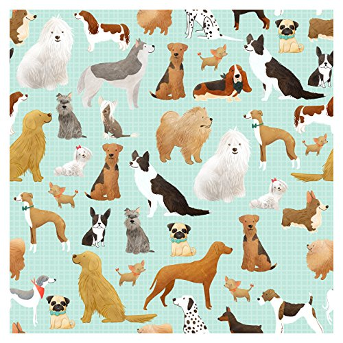 Jillson Roberts 24 Sheet-Count Premium Printed Tissue Paper Available in 15 Different Designs, Best in Show by Jillson Roberts