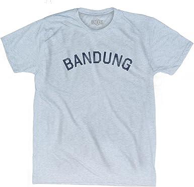 Bandung Vintage City Adult Tri-Blend T-shirt