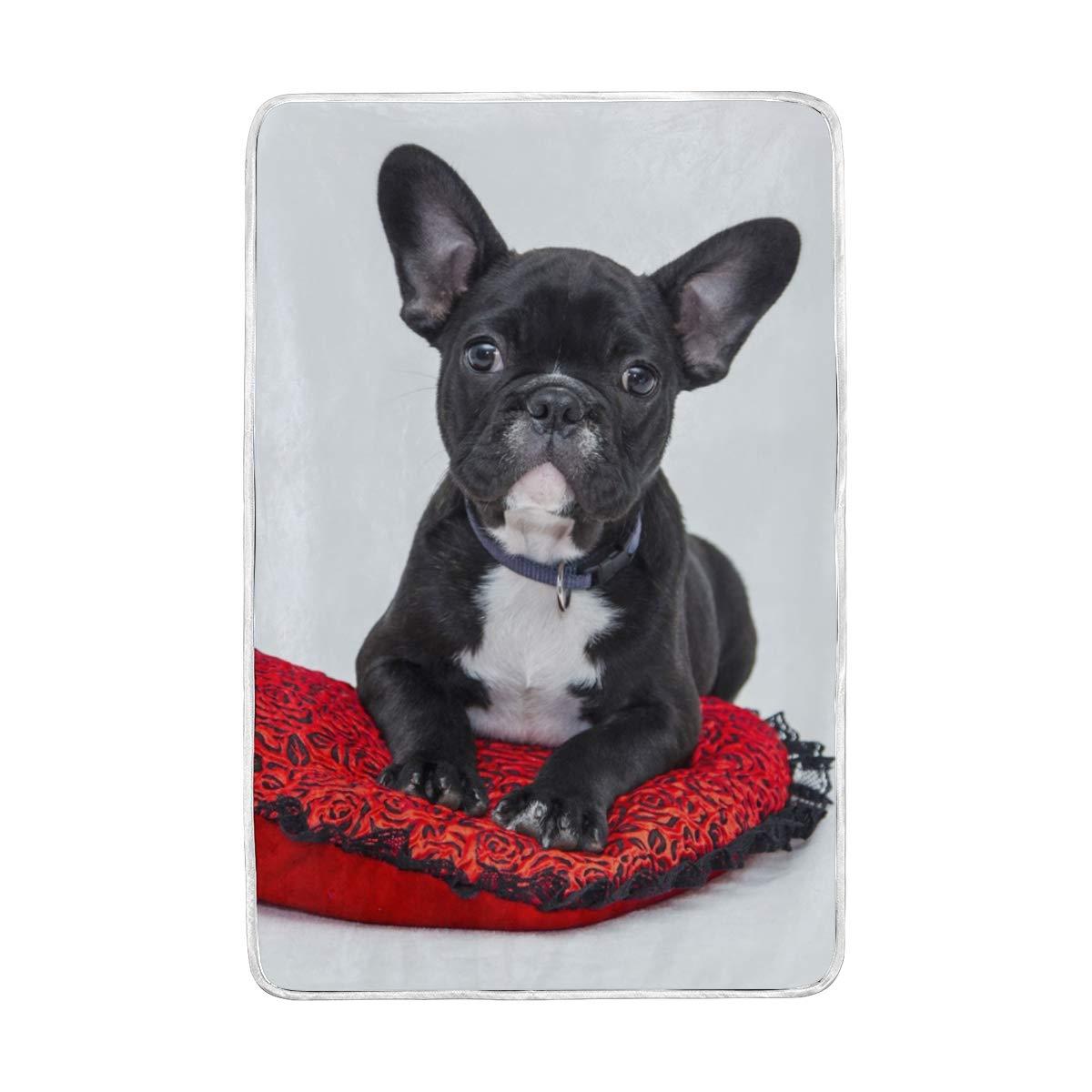 Amazon.com: ATZUCL - Manta de terciopelo para perro, suave ...