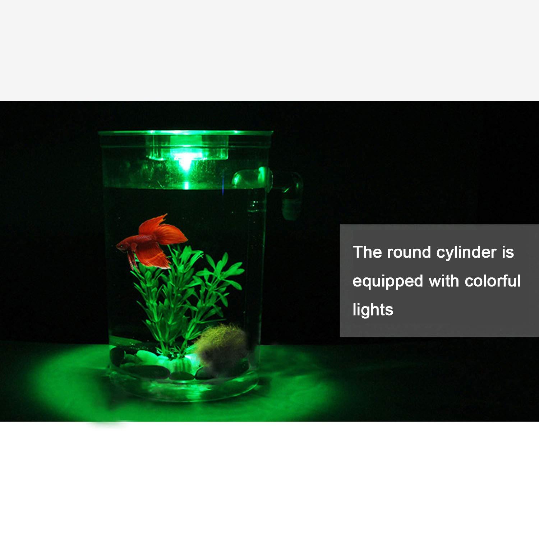 Escritorio Mini Pecera Ecología Creativa Plástica Autolimpiante Cambio De Agua Libre Acuario Pequeño,1Pcs,Round: Amazon.es: Hogar