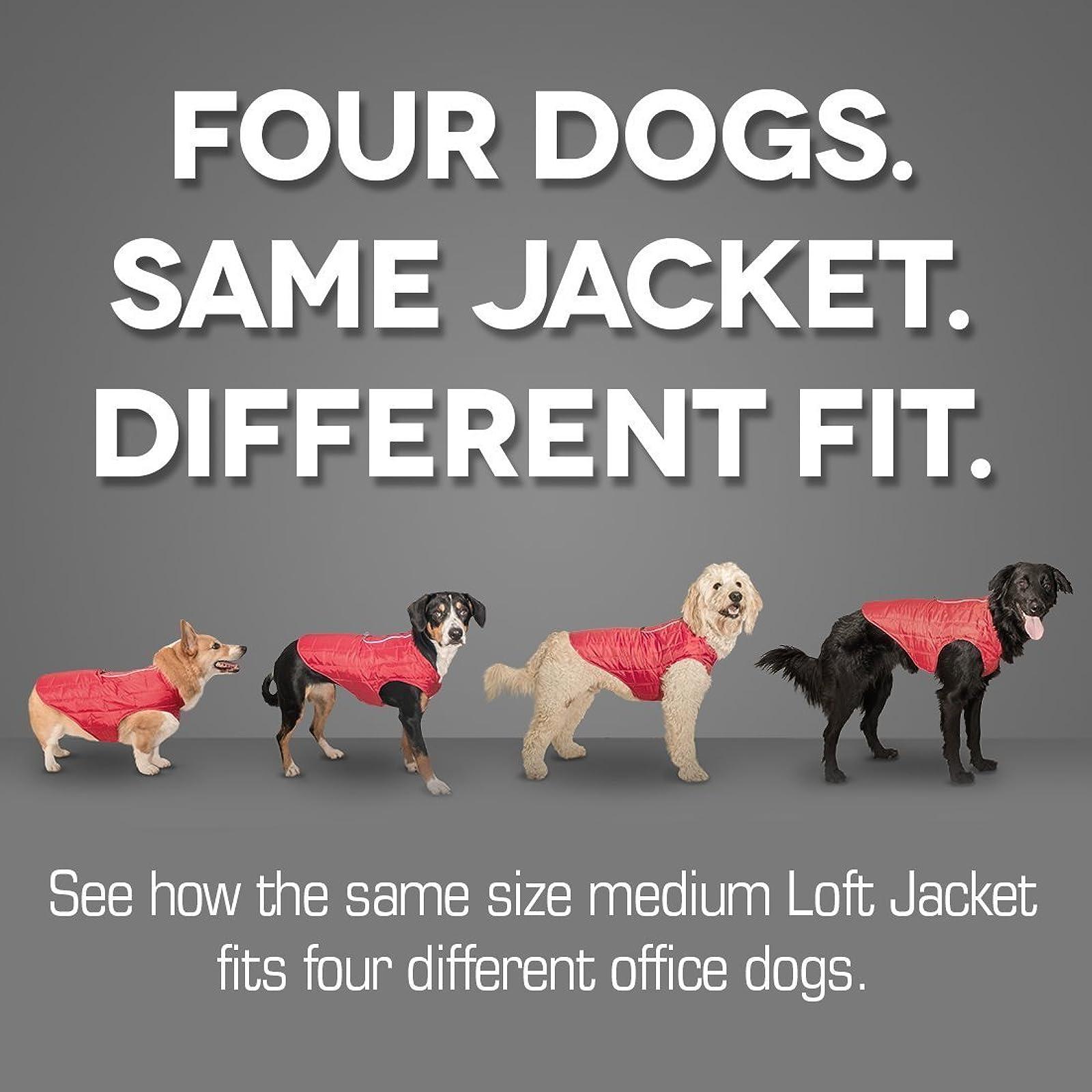 Kurgo Loft Jacket Reversible Dog Coat Dog 01848 Coastal Blue/Orange - 3
