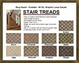 9''x27'' Dog Assist Carpet Stair Treads - CREATED 40 oz. Graphic Loop - Set of 13 w/ 1 Roll Carpet Tape (#5 Artwork)