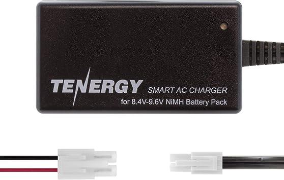 Amazon.com: Tenergy Cargador inteligente para paquetes de ...