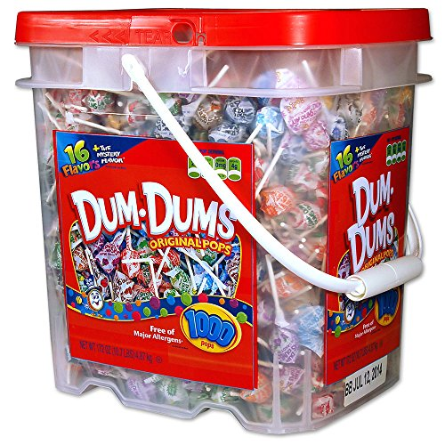 DUM DUMS Lollipops, Variety Flavor Mix, 1,000 Count Bucket -