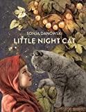 Image of Little Night Cat