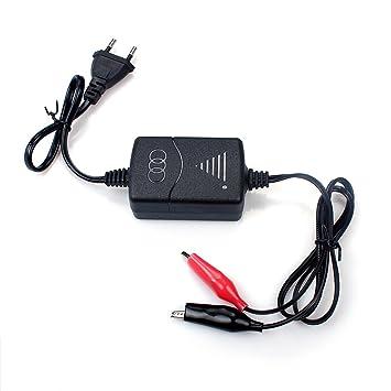 smart charger 1300ma for 12v sealed lead acid sla battery with rh amazon co uk