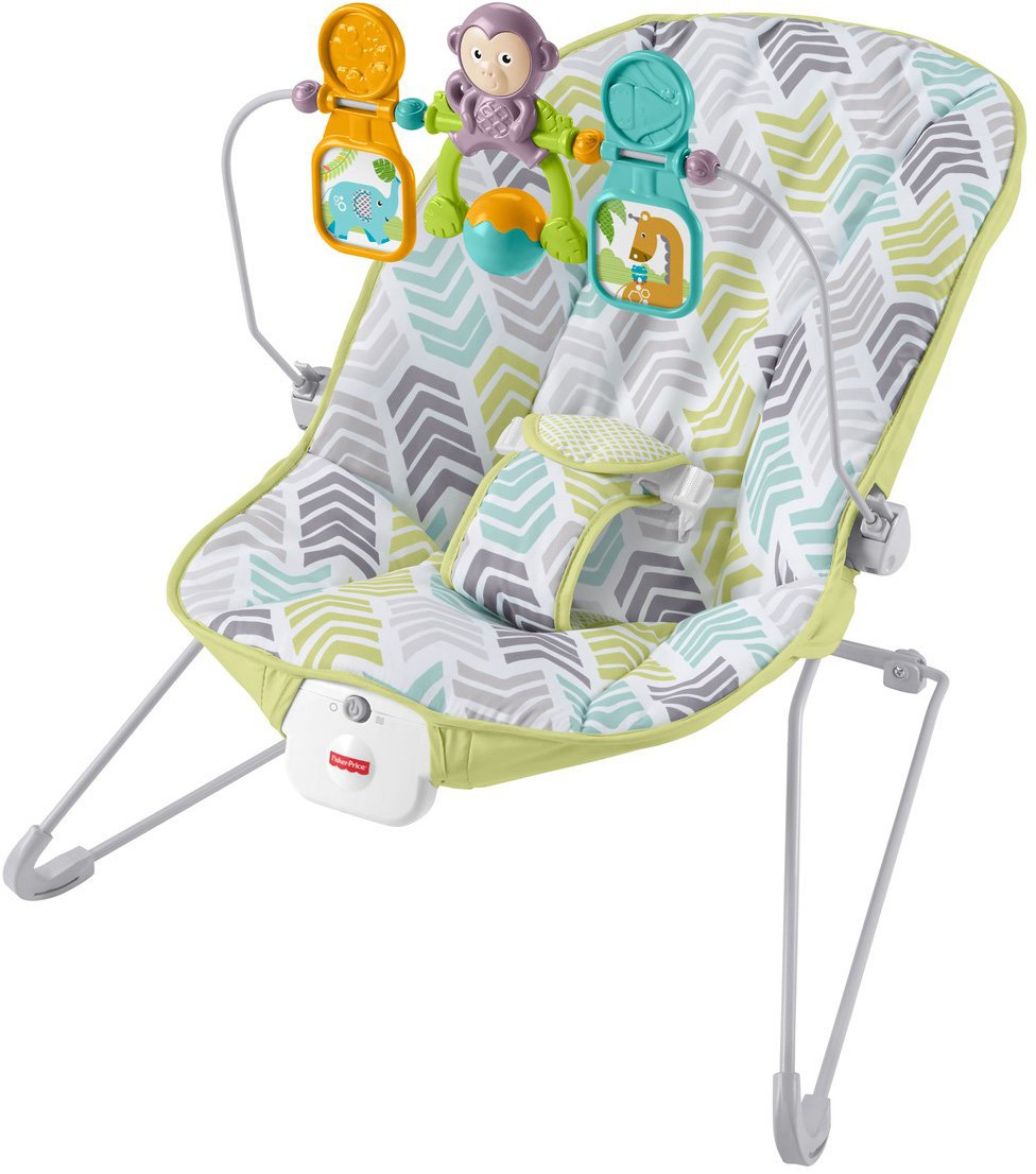 Fisher-Price Baby's Bouncer, Green/Blue/Grey DTG94