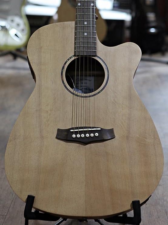 Tanglewood TWRSFCE - Guitarra acústica, acabado natural satinado ...
