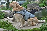 Kuoser Fish and shark Style Ripstop Dog Life Jacket with Rubber Handle Adjustable Pet Puppy Saver Swimming Water Life Vest Coat Flotation float Aid Buoyancy with fin Shark M