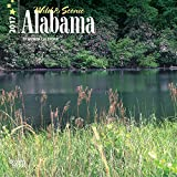 Alabama Wild & Scenic 2017 - 7inch x 7inch Hanging Mini Square Wall Photographic Nature Planner Calendar
