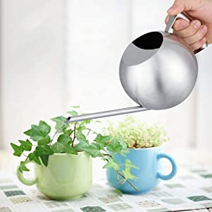 Delaman Watering Can High Capacity Round Watering Can Stainless Steel Watering Pot Brushed Finish Design for Garden Plants Houseplant, Spring Garden Supplies (1000ml)