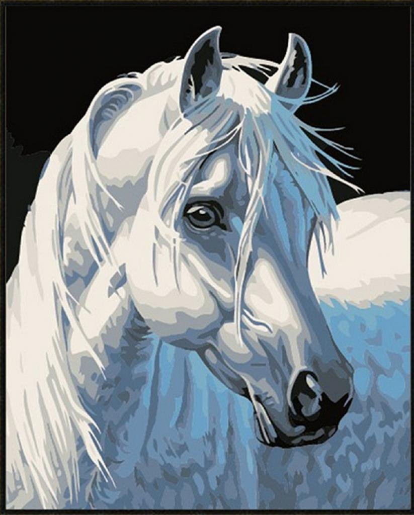 DIY Painting,painting by number kits-White horse 16x20 inch(Framed) JUYESVEE