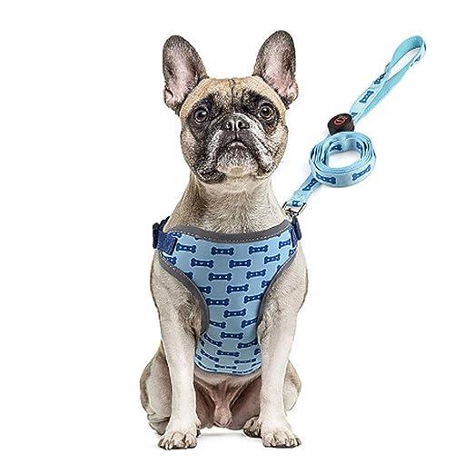 HUILI LED Chaleco para Perros Arnés Chaleco para Mascotas ...