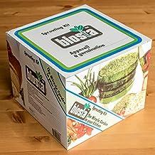 Biosta Kitchen Sprouter - Three Tier Sprouting Kit
