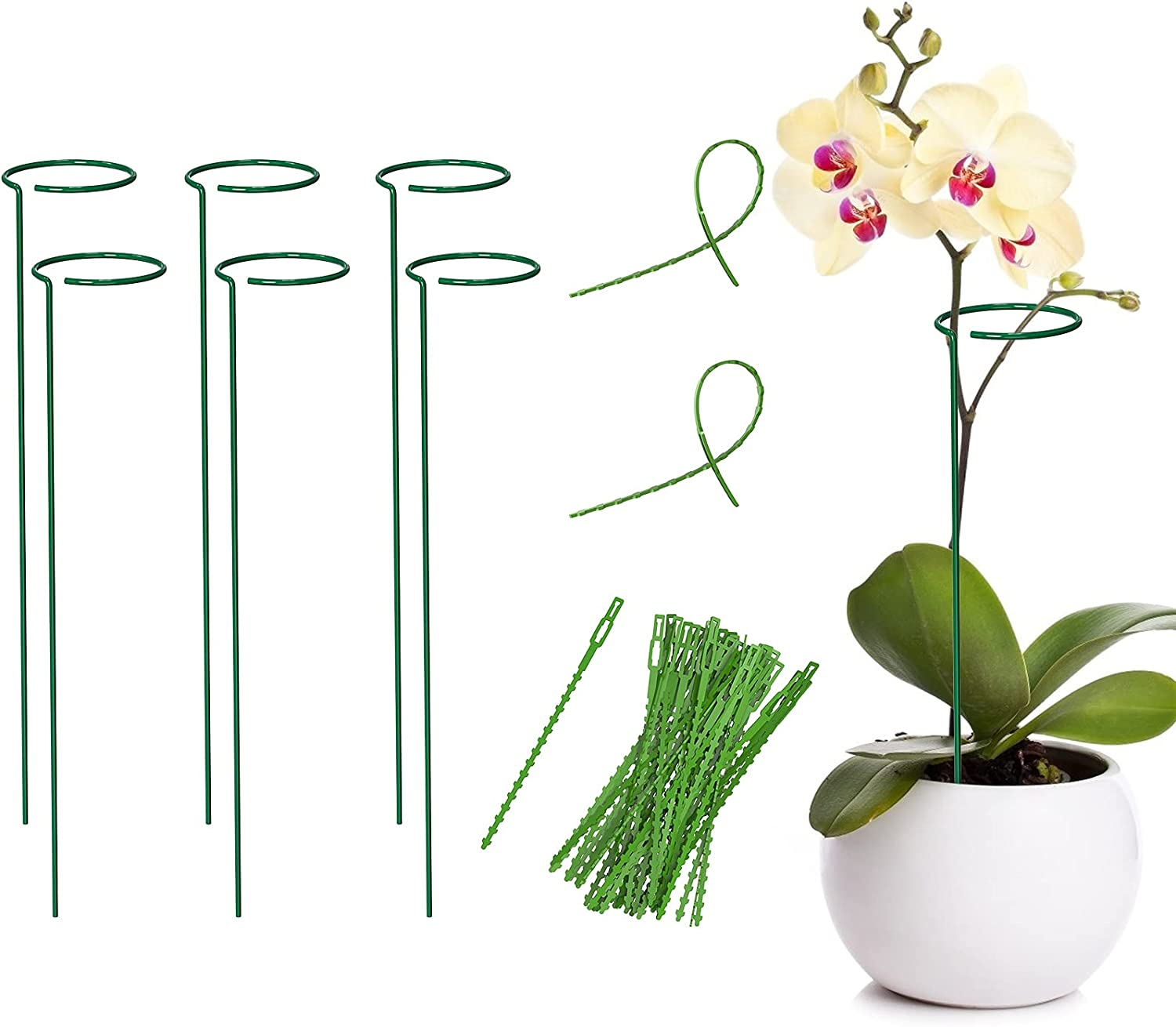YHmall 6 Pack Plant Support Stakes with 50 Pcs Adjustable Plastic Twist Ties, Single Stem Cage Plant Stakes for Garden Flowers Rose Tomatoes Peony Lily Rose Herbs Vegetable