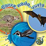 Corre, Nada, Vuela / Run, Swim, Fly, Julie K. Lundgren, 1612368972