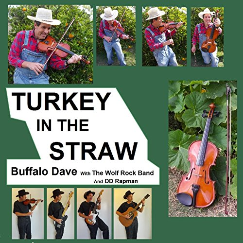 Turkey In The Straw - Extended Version - Traditional Then Country Then Vocal (with The Wolf Rock Band)