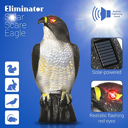Eliminator Scarecrow Eagle with Frightening Sound and Scary Lighted Eyes - Solar Powered and Motion Activated - Predator Scares Away and Repels Birds, Rabbits, Squirrels and other Pests [UPGRADED]