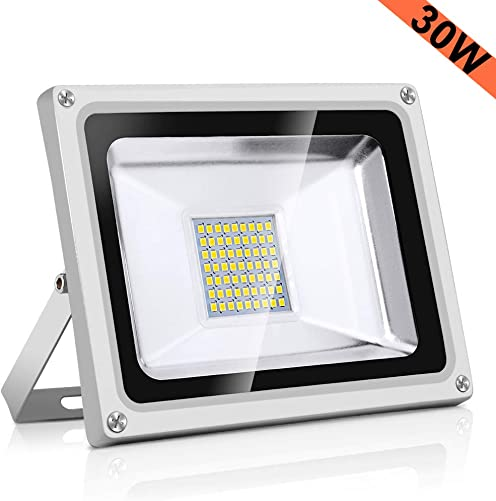 Rinme 30W Flood Light, 3000LM 6000K Daylight White, IP66 Waterproof Super Bright Security Lights Led Flood Light Outdoor for Garage, Yard, Garden, Playground