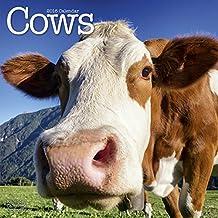 Cows Calendar - 2016 Wall calendars - Animal Calendar - Monthly Wall Calendar by Avonside