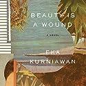 Beauty Is a Wound Hörbuch von Eka Kurniawan Gesprochen von: Jonathan Davis
