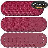 Anezus 75 Pcs 5 Inch 8 Holes Sanding Discs 80 100 120 240 320 Grit Hoop and Loop Velcro Sandpaper for Random Orbital Sander