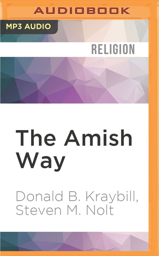 The Amish Way: Patient Faith in a Perilous World PDF