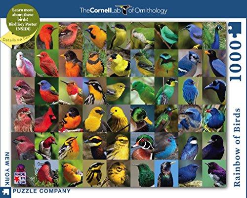 New York Puzzle Company - Cornell Lab Rainbow of Birds - 1000 Piece Jigsaw Puzzle (Rainbow Jigsaw)