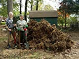 radius garden root slayer shovel  2017 green thumb award for most innovative garden tool