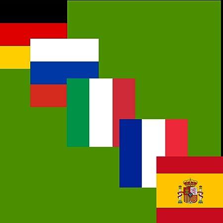 Euro Champions Imanes (Juego de 5 por 5 x 5 cm): Alemania, España, Francia, Rusia, Italia – Euro 2016: Amazon.es: Hogar