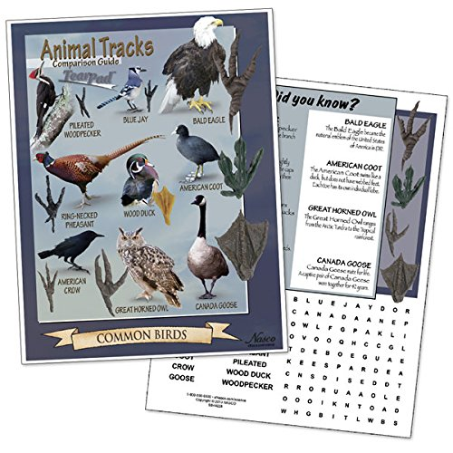 Nasco SB49228 Tracks of Common Birds Comparison Guide Tear Pad