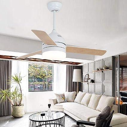 Amazon.com: Le Fan Nordic - Lámpara de techo con ventilador ...