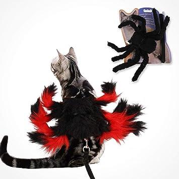 Dough.Q - Disfraz de araña para Halloween, Gato, Halloween ...