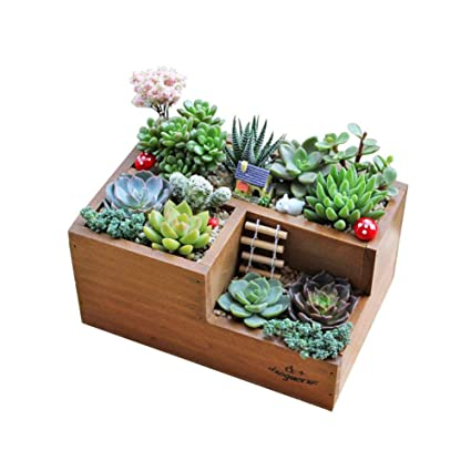 Amazon.com : DIY Wooden Garden Window Box Trough Planter Succulent Flower  Bed Pot, Three Grid : Garden U0026 Outdoor