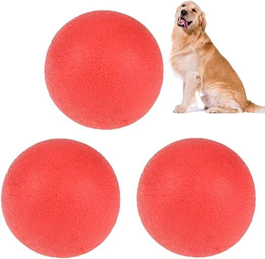 Pelota de entrenamiento para mascotas, 3 piezas Bola de perro que ...