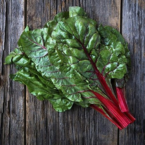 Swiss Chard Seeds - Ruby Red - 5 Pounds, Bulk, Vegetable Seeds by Eden Brothers
